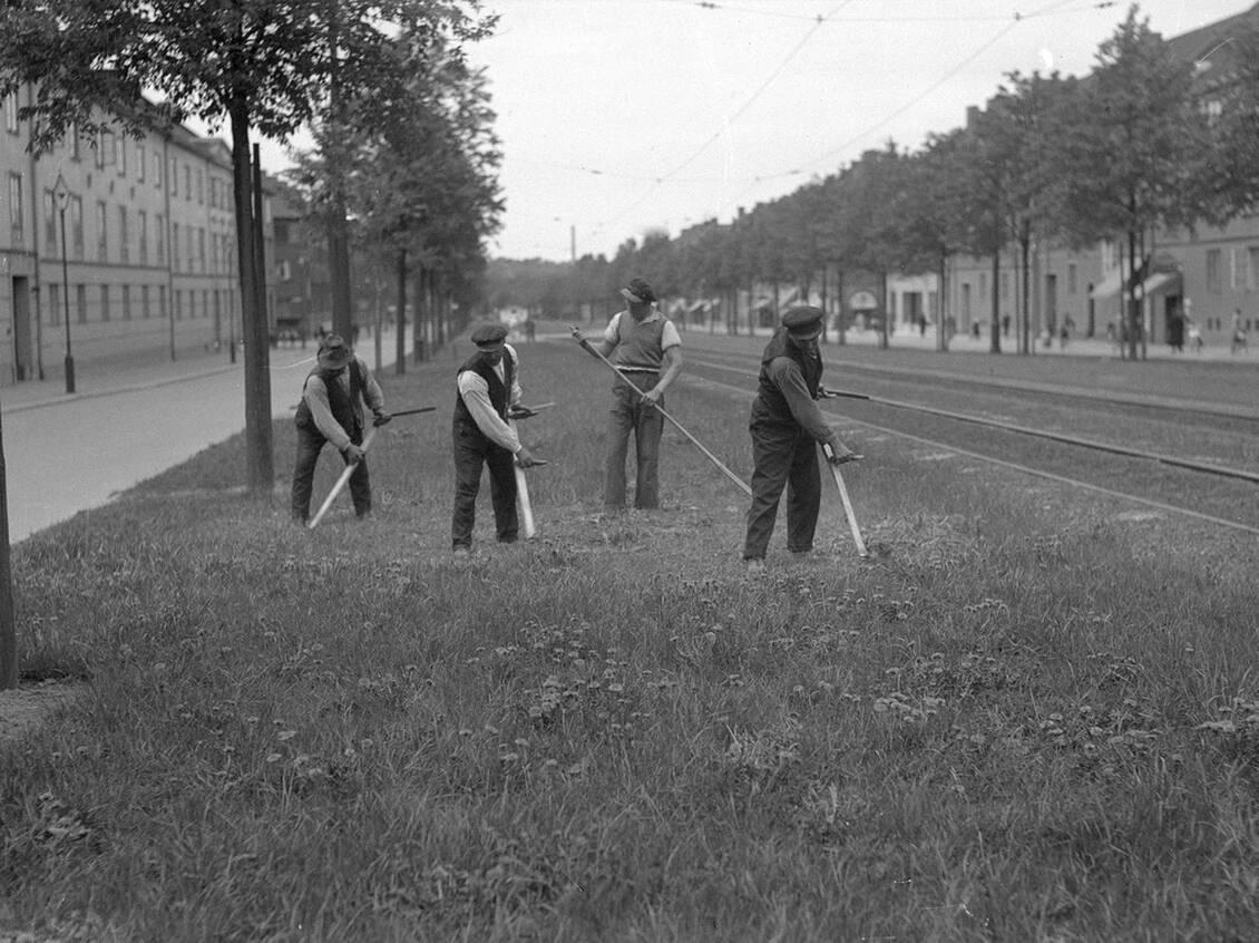 Maj 1935 gräset slås på Älvsborgsgatan