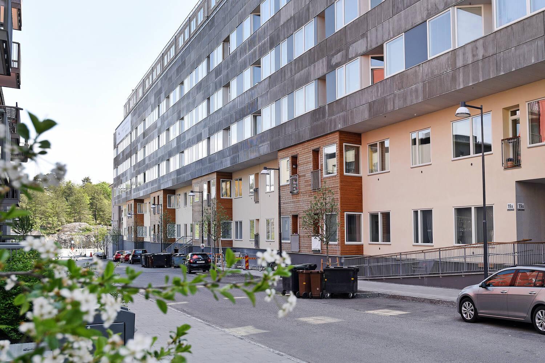 stiglindbergsg17b-34