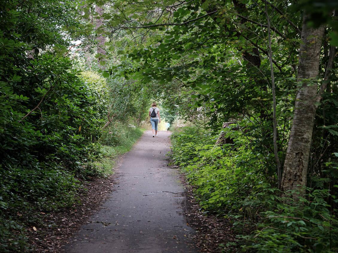 Promenad- och löprundor alldeles i närheten