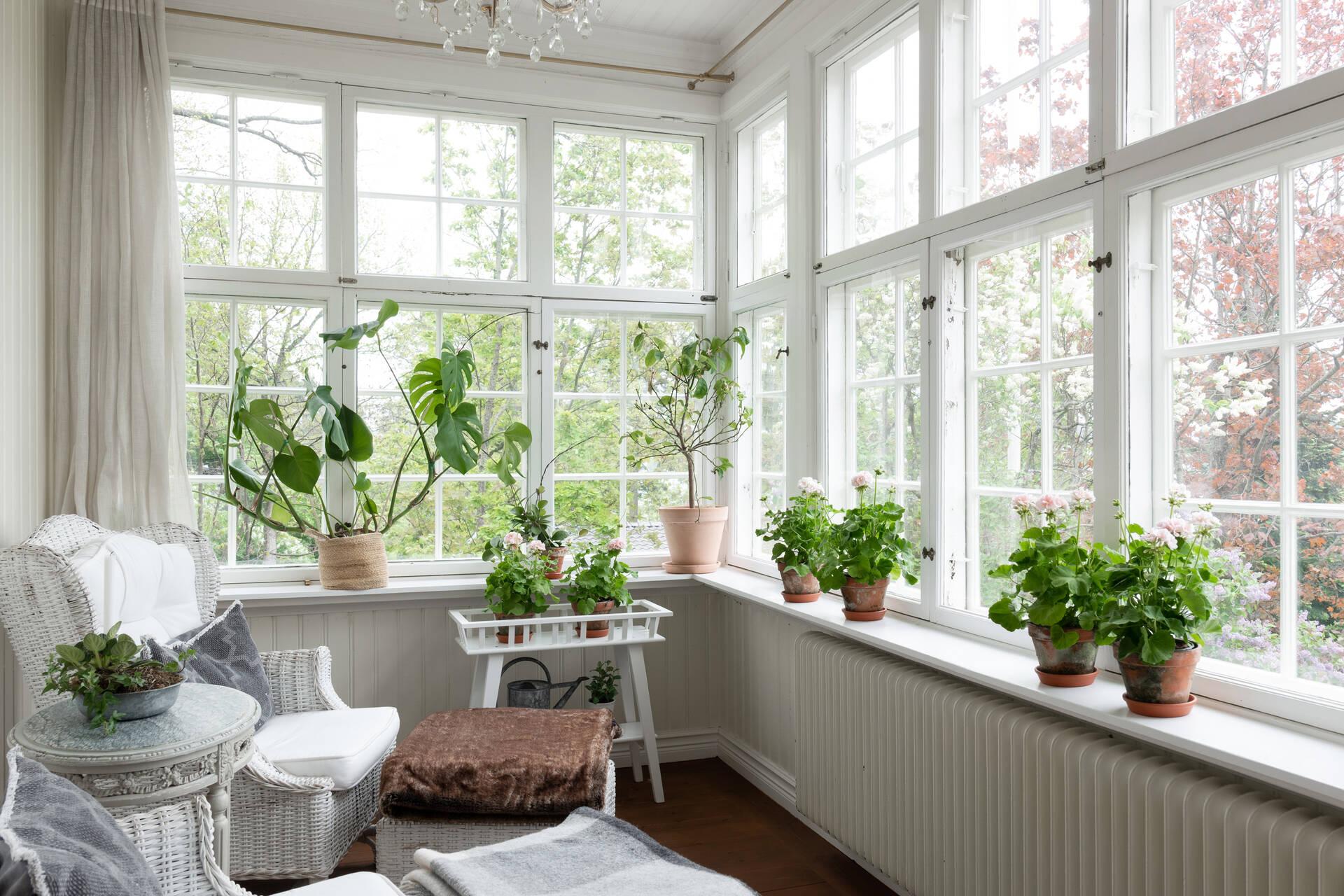 Punsch veranda