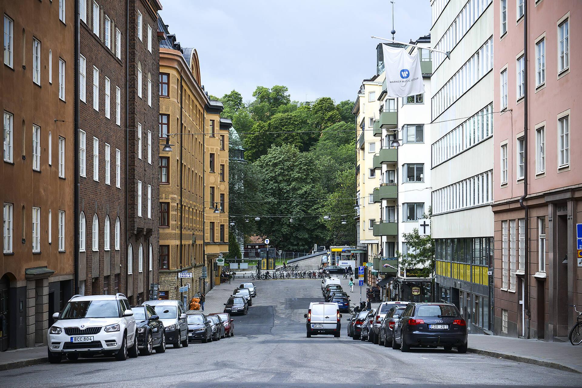 gata1 lågupplöst