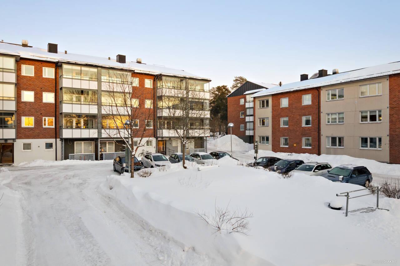 Björkgatan 23