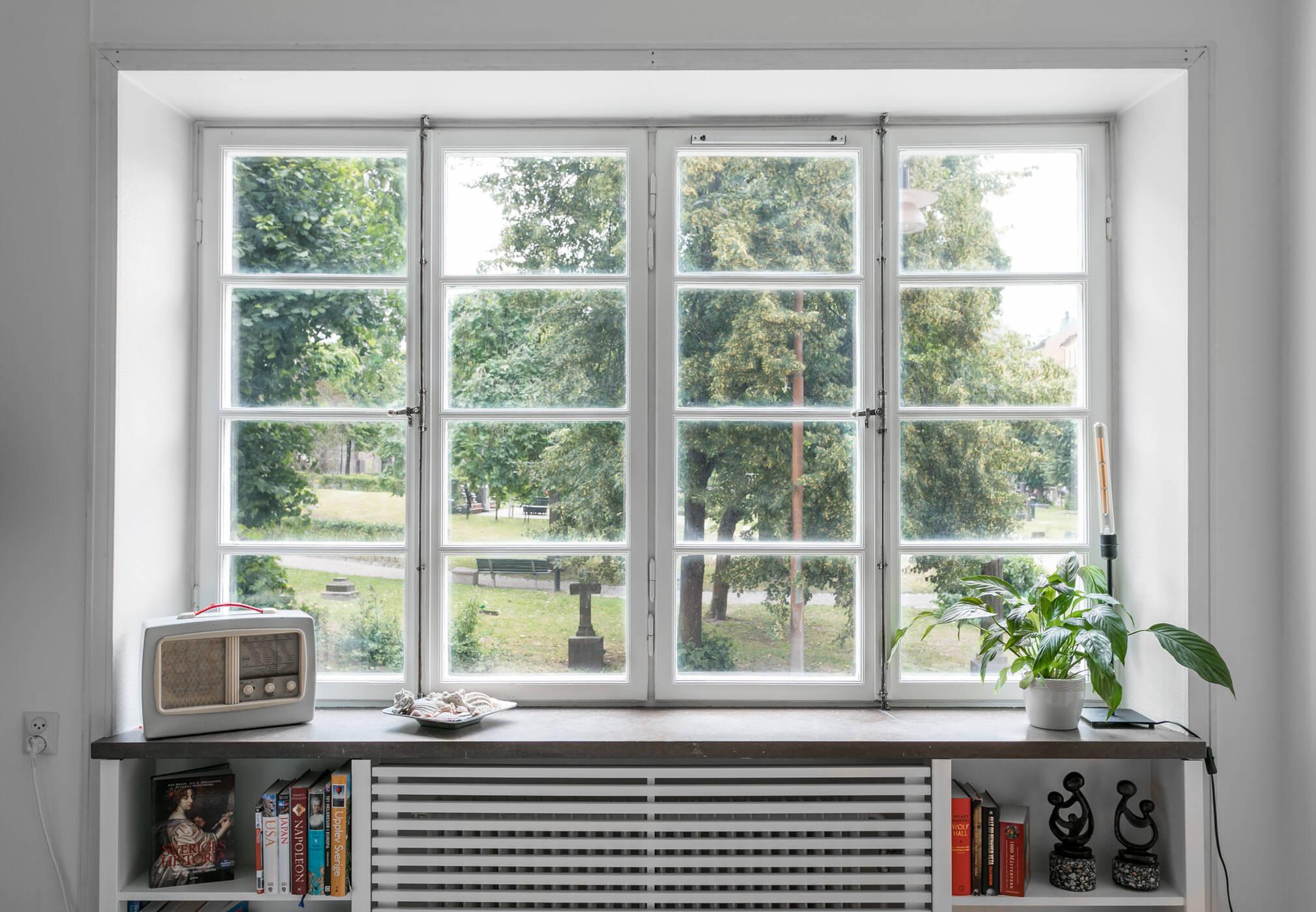 Utsikt från vardagsrumsfönster