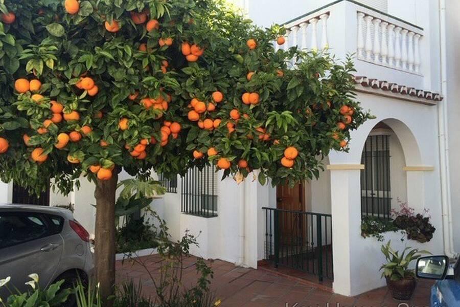 Spansk idyll mitt i Nerja