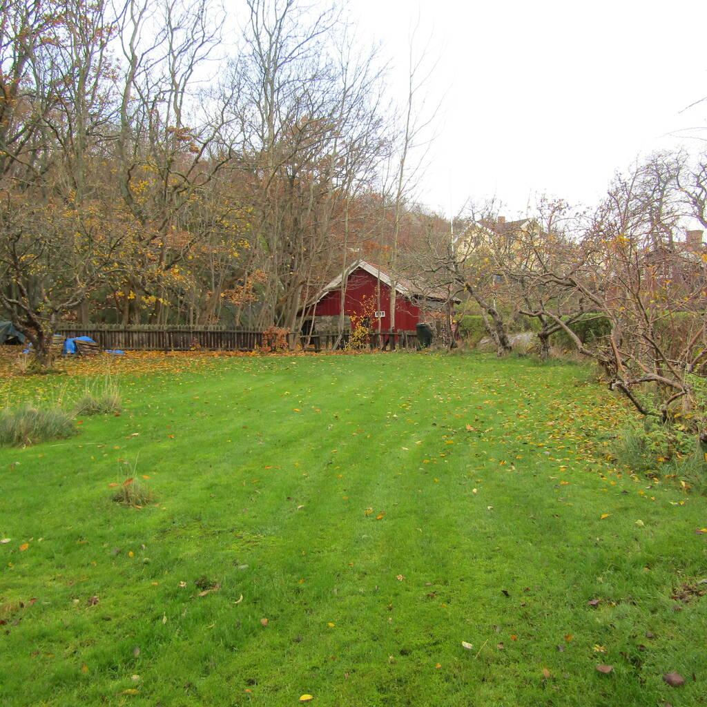 Fin trädgårdstomt centralt på Brännö